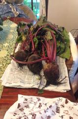 単品野菜(ビーツ)